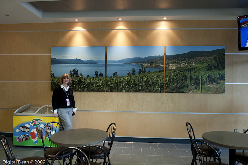 Artwork Installed at Kelowna Airport