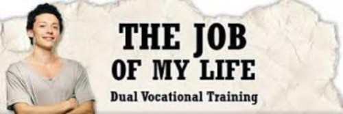 1 the job of my life