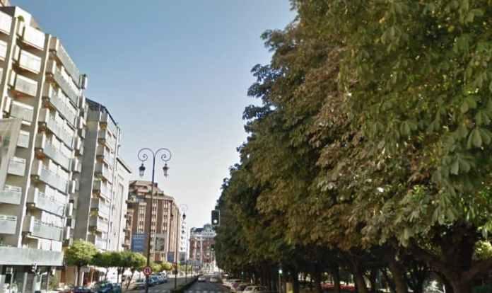 perro ataca a varias personas en León