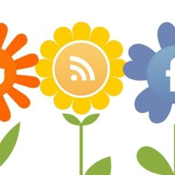 Pinterest, Blogger, Wireless, Facebook, Twitter flower heads
