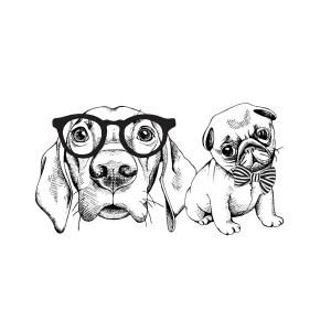 Teflon Dog