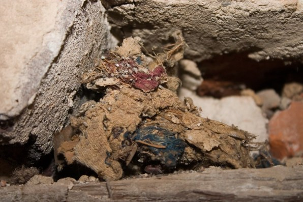 Rodent nest found above the lintel of the window in Room 104. It appears to contain fabric as well as other objects.