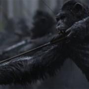 Planet der Affen- Survival- 3D- Szenenbild
