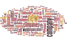 wordle-exponential-organizations