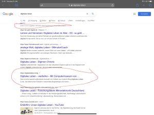 Die Webseite Digitales Leben in der Ergebnisliste von Google