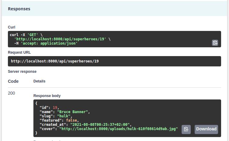 API platform file upload absolute asset url