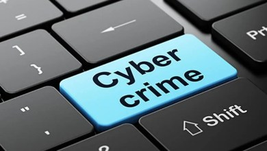 The Bad Effects of Cybercrimes