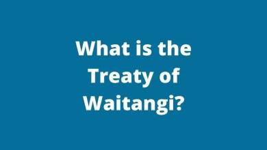 what is the treaty of waitangi