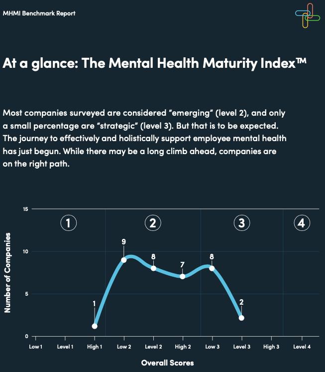 Big Health Mental Health Maturity Index (MHMI) survey