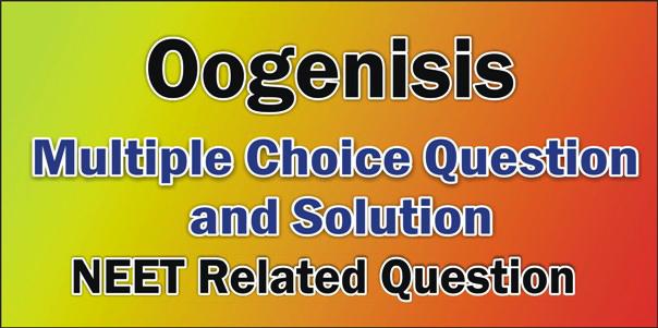 Oogenisis