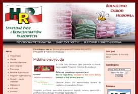 projektowanie stron www nasielsk