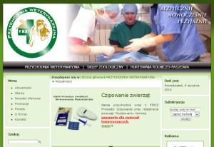 projektowanie stron www pułtusk