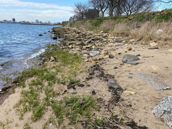 East Shore Park