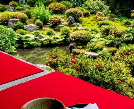 初夏の京都の緑その2 京都大原三千院