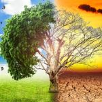 Global Warming Causes and Climate Change Effects   UPSC – IAS