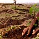 Compensatory Afforestation Fund Act   UPSC – IAS
