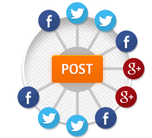 Who should handle their social media posts in an organisation