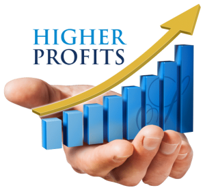 Building a profitable business in Nigeria