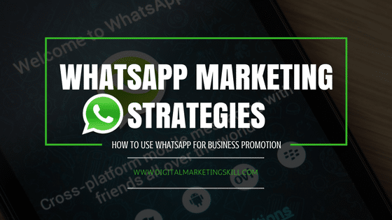 WhatsApp Marketing Strategy _ How to use WhatsApp for Business Promotion
