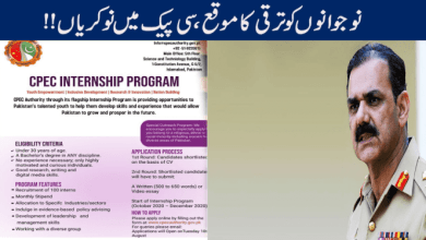 Photo of How to Apply for CPEC Internship Program
