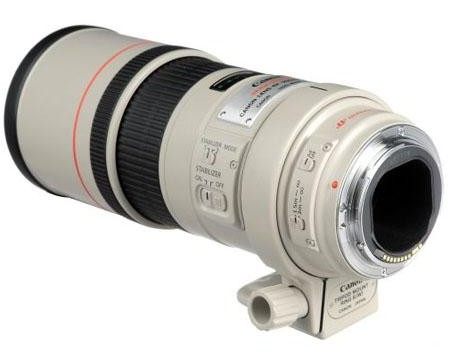 Canon EF 300mm f:4 L IS USM Lens-b
