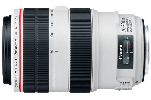 Canon EF 70-300mm f:4-5.6L IS USM