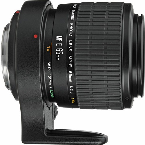 Canon MP-E 65mm 1-5x Macro Lens