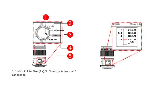 Olympus M.ZUIKO DIGITAL ED 60mm 2.8 MACRO 14