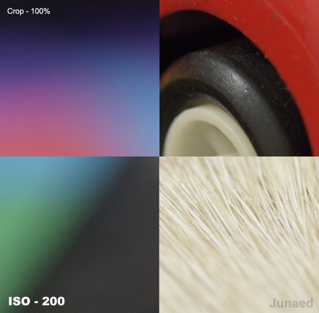 Nikon D810 ISO-200-Sample