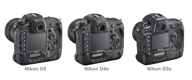 Nikon D5 vs D4s vs D3s back