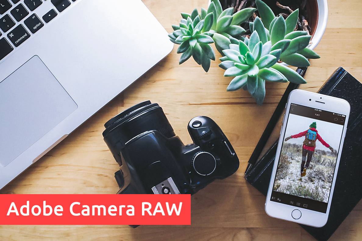 Скачать программу adobe camera raw 10. 0. 0. 827 for photoshop + presets.