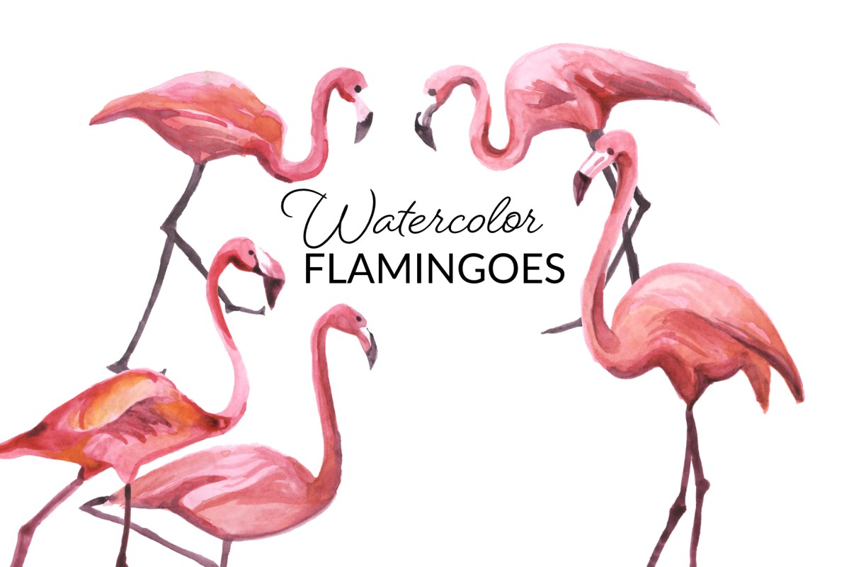 Watercolor Flamingoes
