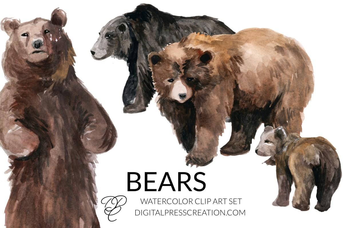Watercolor bears clip art, bear clipart, watercolor bears