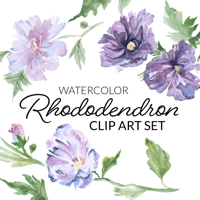 Watercolor Rhododendron cover photo image. Purple bush flower clipart of a rhododendrons. Light pink and purple