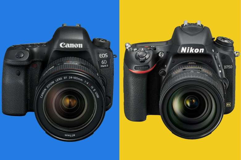 The Canon EOS 6D MkII and the Nikon D750 both feature full frame sensors