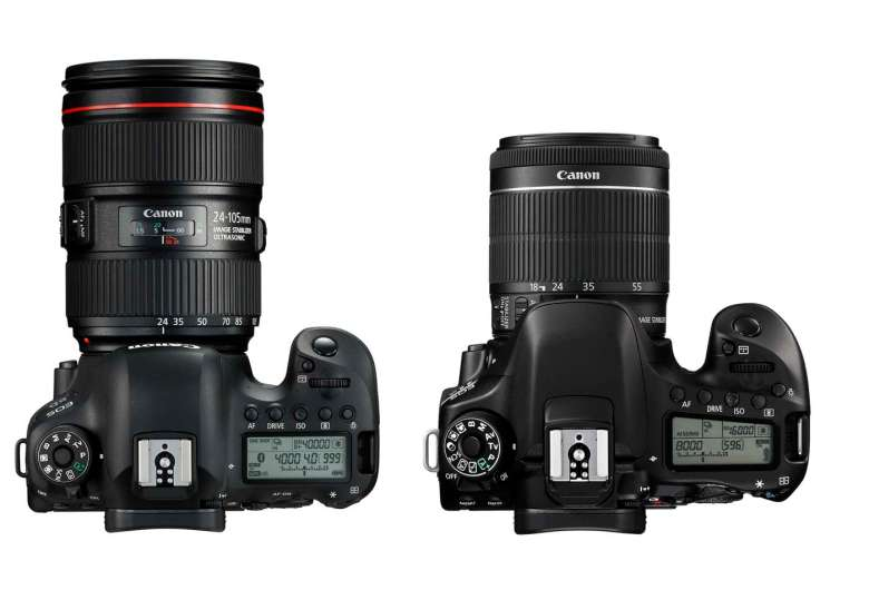 Both cameras offer 45-AF points, but the 6D MkII gives a higher ISO range.