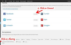 Auto Publish Blog Posts to Facebook and Twitter