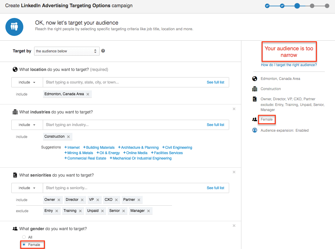 LinkedIn Advertising Targeting Options