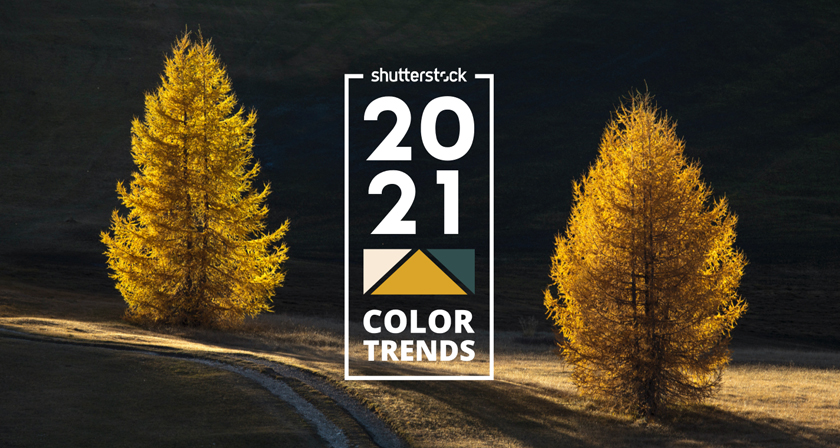 2021 Color Trends: The World's Most Popular Colors