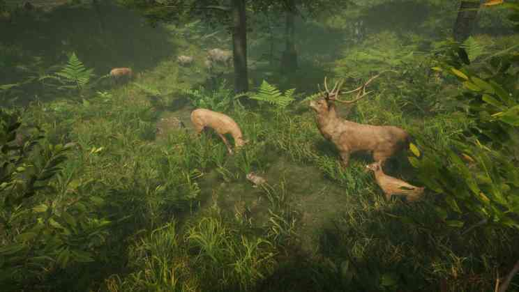 Natural Instincts Open-World Nature ss1