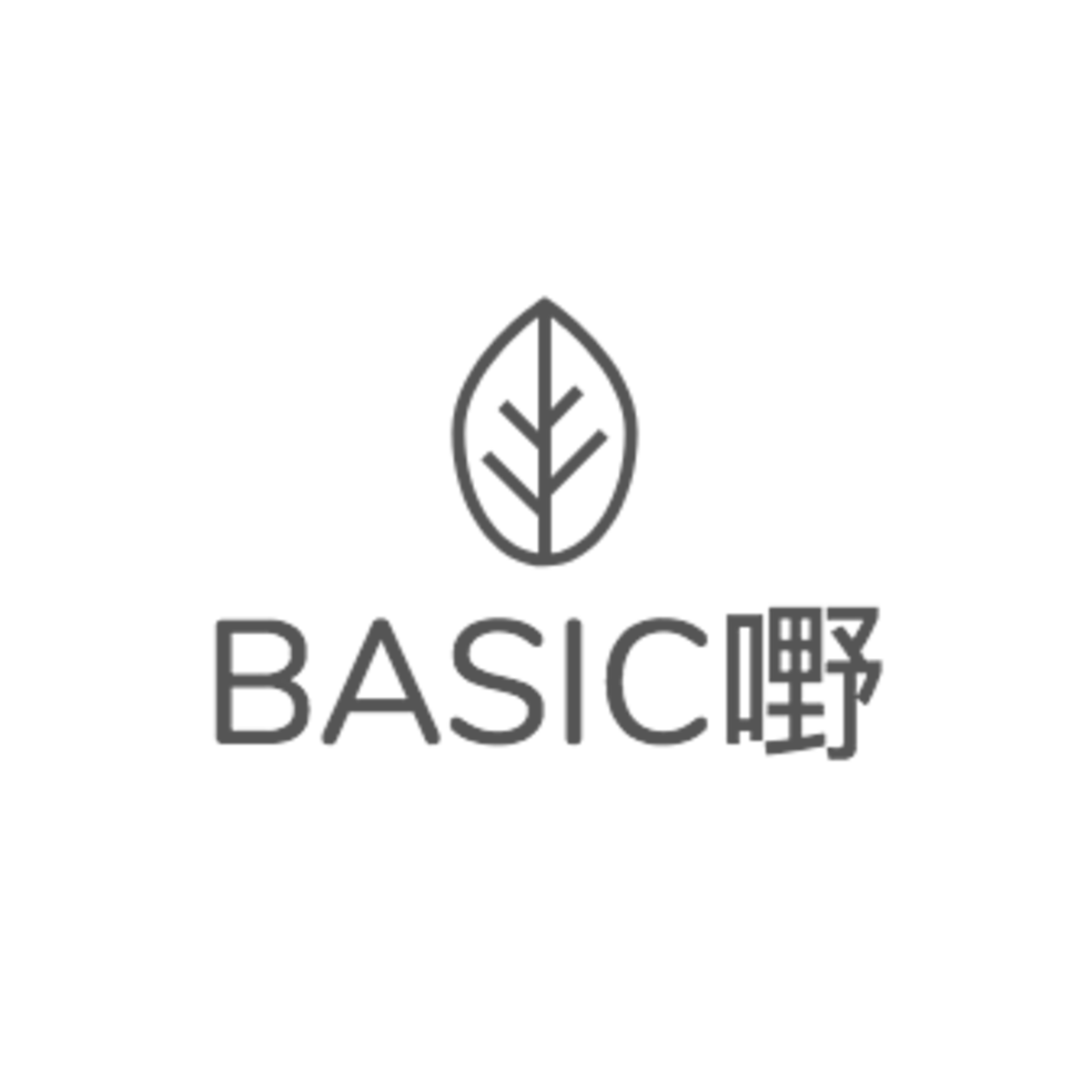 Copy of BASIC_-logo_4_1