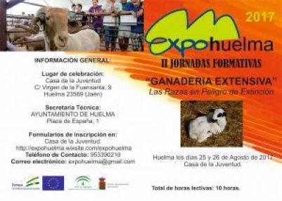 Programa Expohuelma