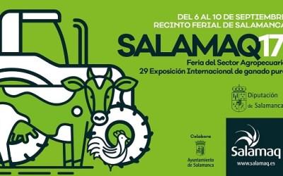 Salamaq17: Digitanimal présent avec des nouvelles importantes.