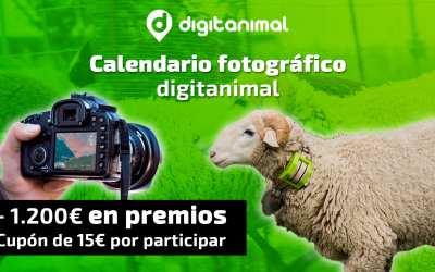 Participa en el Calendario Digitanimal y consigue tu premio