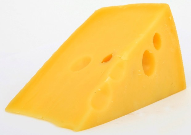 Holes in Swiss cheese showing the dilemma of good and bad bacteria