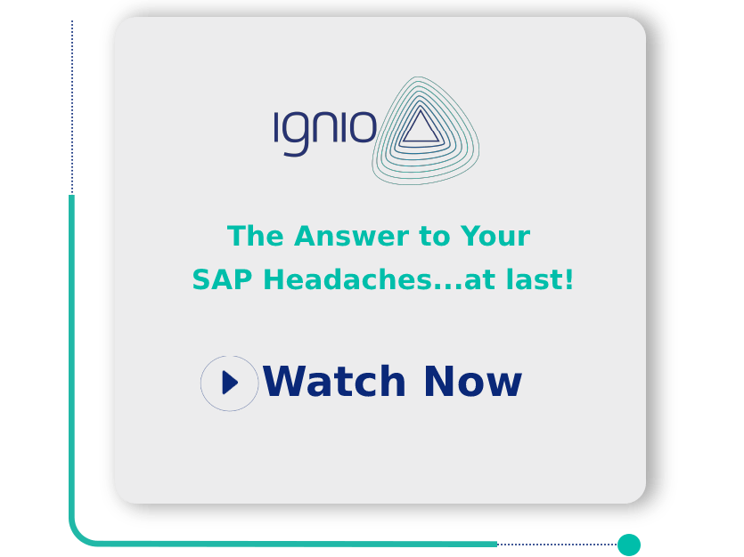 The Answer to Your SAP Headaches