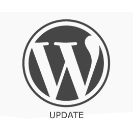 WordPress Updating Tips