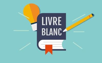 Rédiger son livre blanc : bonnes pratiques et exemple