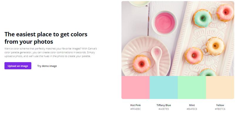 Canva color palette color schemes generator
