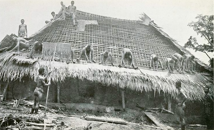 A black and white image of Igbo people making a roof out of leaves